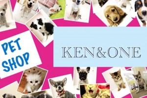 ケン&ワン 観音寺店の仕事イメージ