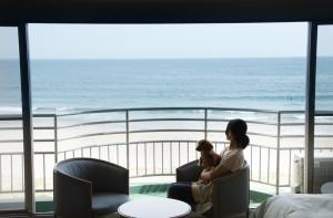 株式会社ベリークルーズ、しぶごえ御宿海岸の仕事イメージ