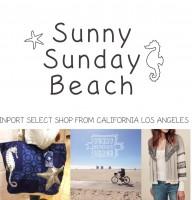 Sunny Sunday Beachの仕事イメージ