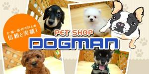 株式会社ドッグマンコーポレーション ペットプラザ和歌山店の仕事イメージ